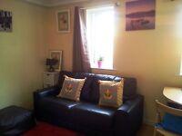 Studio apartment for rent (short term)