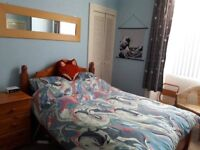 Lovely and cosy hideaway Festival let, sleeps 4