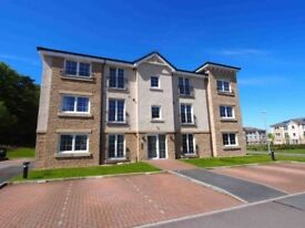 1st Floor, Executive, 2 Bedroom, Tastefully Furnished flat!