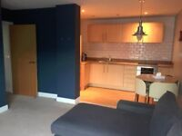 City Centre Apartment next to iconic Mailbox, short or long term. Furnished, modern, equipped !!
