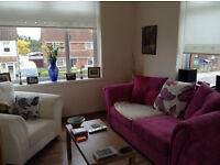 Pink DFS sofabed (two seater) 2 yrs old great condition