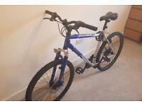 Adult Bike / bicycle