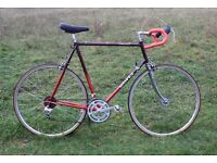 STUNNING Reynolds 531 Dawes Galaxy racing bike - large (light steel road bicycle) (like Raleigh)