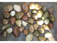 Garden Stones / Cobbles