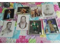 Bundle of wwe wrestling pictures