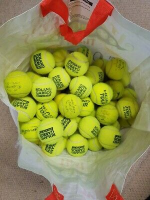 15 Used Tennis Balls For Dogs
