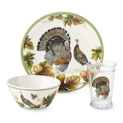 Williams Sonoma Botanical Turkey Plate set Melamine dinnerware Thanksgiving New
