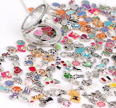 Charms For Bracelets Wholesale (Wholesale 30pcs Mix Charms lots Floating for Living Memory Locket Bracelets)