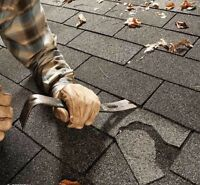 PROFESSIONAL SHINGLES REPAIR