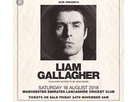 Liam Gallagher Manchester x 2 standing tickets £160 for the pair £80 each