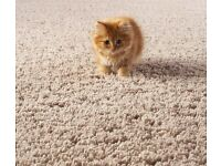 High-standard Cleaning Service. Book End Of Tenancy + Carpet Cleaning today, get 15% of discount!