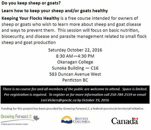 Sheep and Goat workshop in Penticton