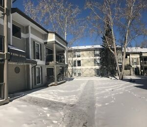 1 Bdrm SW,$895/mo-March free-April-May-June half rent free