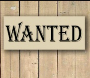 Apartment Wanted: