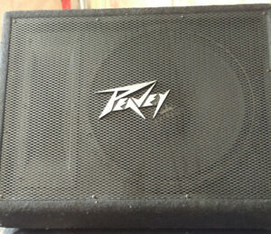 Peavey and custom made floor monitors