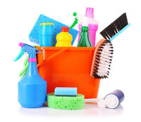 Small cleaning company looking for contracts