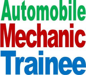 Auto Mechanic Trainee – A career with a future!