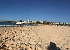 Short term rent in bondi beach Bondi Beach Eastern Suburbs Preview