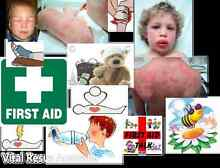 SPECIAL $90.00 Provide First Aid Warners Bay Lake Macquarie Area Preview
