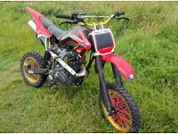 Lifan 150cc large pit bike