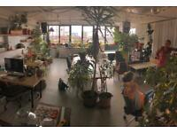 Broadway Market E8 desk spaces with a view in creative space by canal with soundmix/grade room