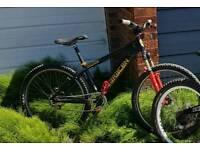 Saracen Jump bike