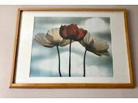 Flower Framed Wall Picture