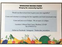 Volunteers Needed for our Community Garden