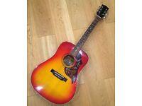 Vigo Hummingbird Guitar