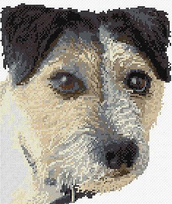 "Jack Russell Dog Shaggy Portrait - Cross Stitch Kit 8.5"" x 10"", 14 Count, Anchor, usado segunda mano  Embacar hacia Spain"