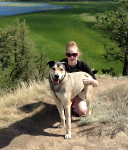 long-term pet friendly rental in Invermere area