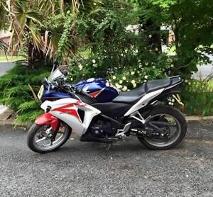 2011 Honda CBR250R Armidale Armidale City Preview