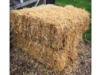 STRAW - Conventional Barley Straw Bales for Sale - Dereham, Norfolk