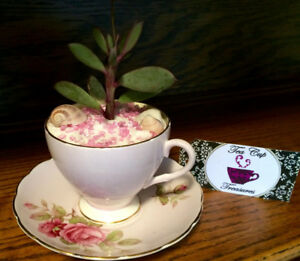 Perfect Mother's Day Gift! Tea Cup Treasures