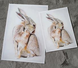 Hare A3 or A4 Art Print
