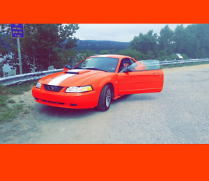 2004 Ford Mustang Coupe (2 door) anniversaire edition