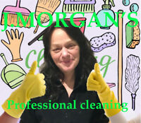 PROFESSIONAL CLEANING $80- 4 HR MIN CALL (437)929-2908 TO 10 PM