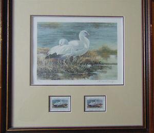 1986- 1994 Wildlife Habitat Canada / Prints with Stamps London Ontario image 8