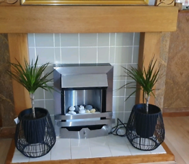 2 beautiful indoor plants with new pots and stands