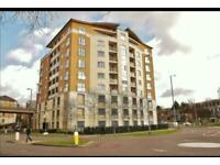 1 bedroom flat in Selden Hill, Hemel Hempstead, HP2