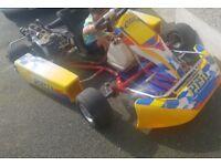 Wee racing go kart hours of fun poss swap or px