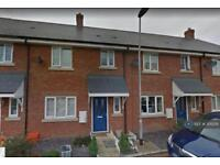 3 bedroom house in Academy Drive, Basildon, SS15 (3 bed)