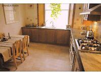 Super Edinburgh Old Town flat. 2 bedrooms, large living room + kitchen. Big bathroom, separate WC