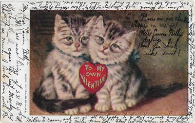 """STEUBENVILLE OHIO FEB. 13th 1907 """"FAMILY INTEREST""""--SENT TO--SPRINGFIELD OHIO~~~"""