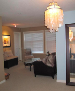 BEAUTIFUL ONE-BEDROOM & DEN FURNISHED CONDO - VERVE