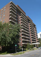 Large 2 Bedroom corner unit Downtown for July - Last One!