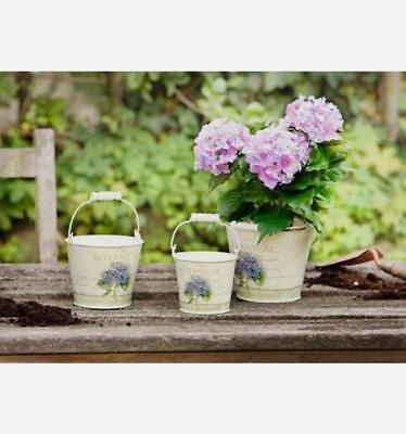 Small Metal Buckets (Small Metal Buckets with Hydrangea Motif and Wood Handles, Set of)