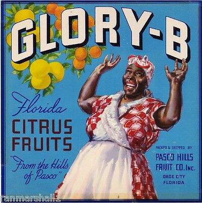 Dade City Florida Glory-Be Orange Citrus Fruit Crate Label Art Print