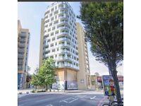2 bed 2 bathroom luxury flat to let near Lewisham station - fully furnished