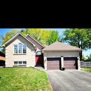 Bungalow House For Sale In Barrie Kijiji Classifieds